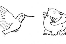 La disyuntiva del software… Ser hipopótamo o colibrí
